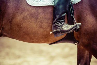 馬に伝わりやすい脚(きゃく)の使い方 ~乗馬での脚による扶助が与えるメリット・デメリットとは~
