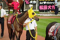 【競馬初心者必見】パドックで勝つ馬は分からないが、勝てない馬の見分け方とは