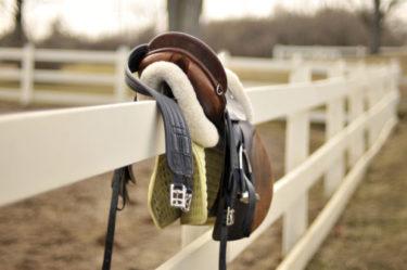 乗馬で必要な道具とは① ~機能・参考価格・初心者必須アイテムなど~