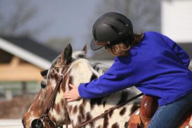 絶対に知っておくべき!愛撫は馬をほめることではない理由とは