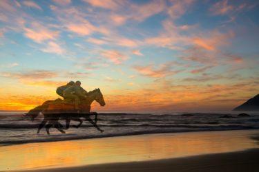 サラブレッドに上手に乗りたい方必見! 馬と騎手のやるべき3つの仕事!!