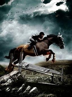 競技・乗馬ライセンス資格試験で成功するための最重要能力とは!?