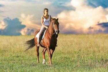 乗馬時に『前を見る』もう一つの理由とは。 ~乗馬スキルアップお役立ち記事~