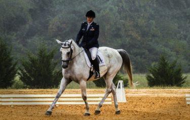 馬に運動時に求める透過性とは ~競走馬も乗用馬も大切なこと~