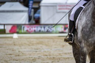 乗馬における基本の号令と馬場に関する用語とは