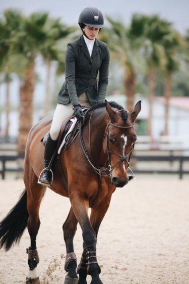 馬の柔軟性を上げるための方法とは? ~乗馬は馬のストレッチ~