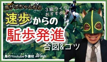 【ポイント】速歩から駈歩発進する合図&コツとは!? ~馬という生き物の習性から学ぶ~